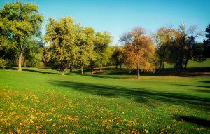 Autumn Fall Golf